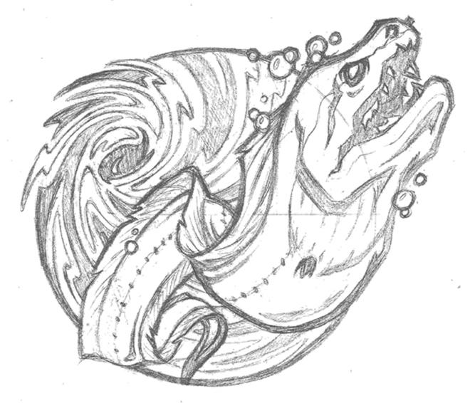 Eel Sketch